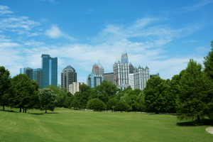 Atlanta, Athens, Clarke County, Sandy Springs artificial grass