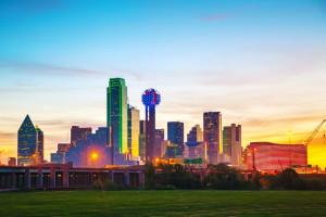 Dallas Fort Worth artificial grass